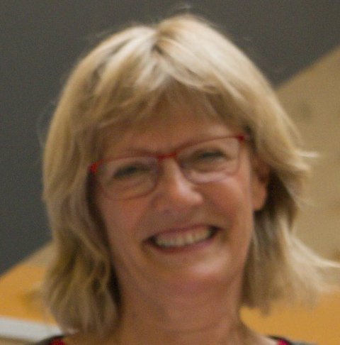 VIL SATSE: Karin Andersen (SV).