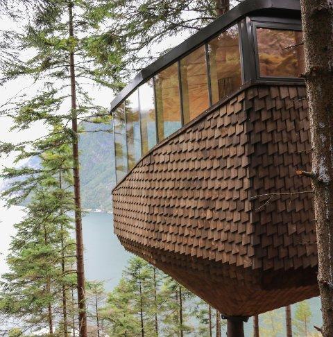 Woodnest: KrF Hordaland vil vite mer om konseptet.