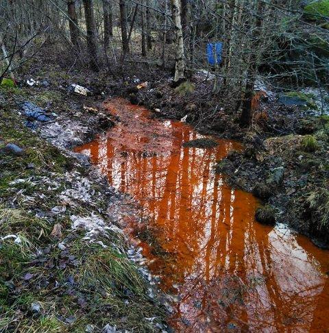 Her ved Brandsvika på Tustna er det lekkasje fra den nå nedlagte kommunale søppelfyllingen.