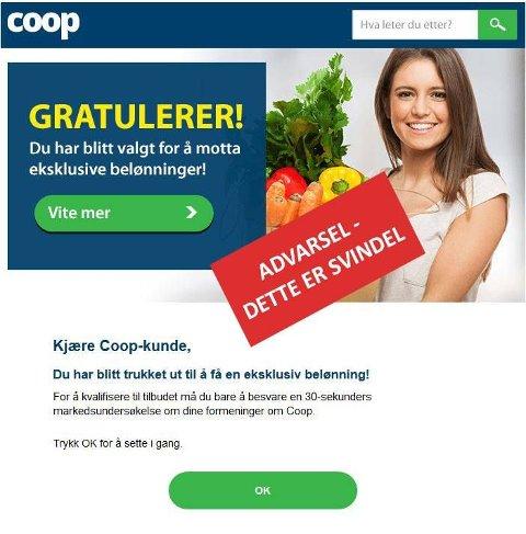 Denne mailen har mange av Coops kunder fått i inboksen de siste dagene. Den røde boksen har Coop lagt på selv.