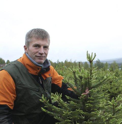 Juletrær: Arne Wilhelm Mohn Omsted fikk nei til å omdisponere 40 mål til juletreproduksjon.