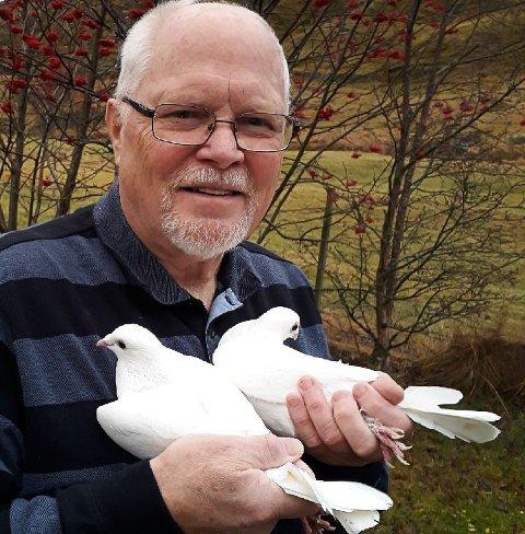 Richard Lunde har i mange år vært den eneste i Nord-Norge med hvite brevduer. 71-åringen på Bøstad har i dag 30 stykk hjemme i fjøset.