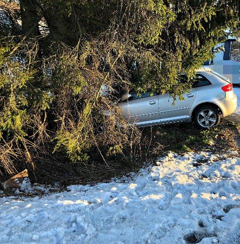 IKKE HELT HELDIG: Som følge av en påkjørsel ble en av bilene dyttet under et grantre.