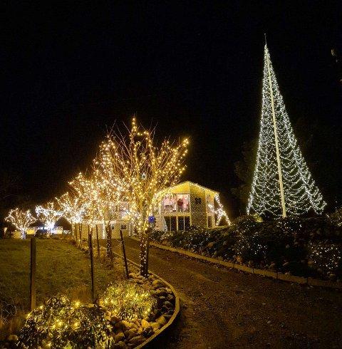 LANDEMERKE: Det er alltid plass til mer lys rundt julehuset på Førland i Haugesund. Nytt av året er det tolv meter høye «juletreet».