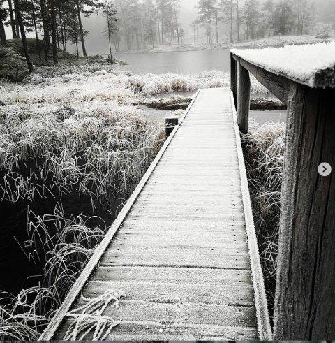 Ute på tur: Lilletoto - aka Gro Sørlie - har tatt dette blinkskuddet ved hytta ved Langevannet.