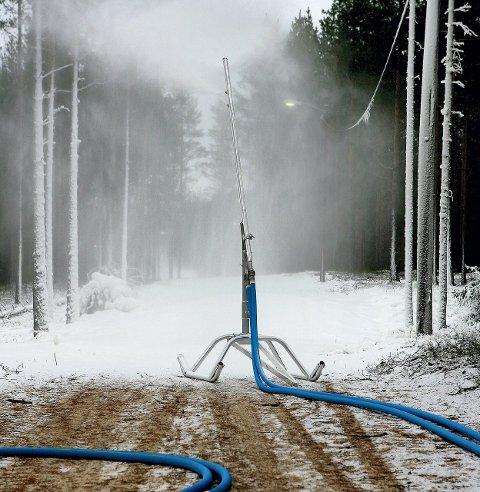 Skimuligheter: På Liermoen skal det kunne være muligheter for å kunne ta en skitur i jula.  Også i Nes Skianlegg    er løypene klare. Det betyr at det til sammen finnes drøyt tre kilometer med skiløyper i distriktet denne julen.ARKIVFOTO