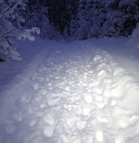FOTAVTRYKK: Dette synet møtte Christine M. Salvesen da hun skulle ut på ski mandag morgen.