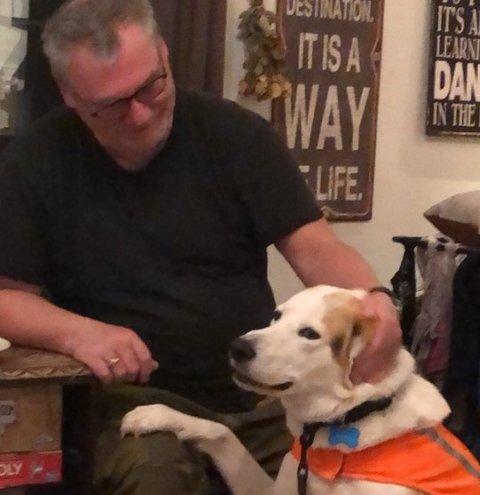 SAVNET: Hunden Whisky har vært savnet siden søndag.