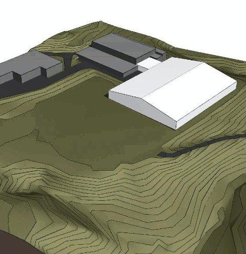 SKISSE: Omtrent slik kan en ny hall i tilknytning til Røykenhallen bli. Her en skisse fra tidligere ideer.