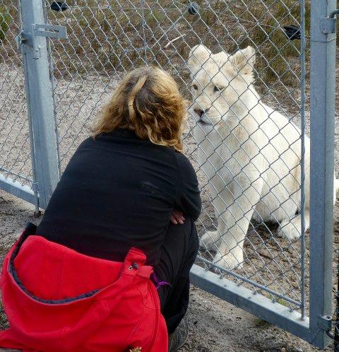 FRIVILLIG: Nina Borgersen drar til Sør-Afrika i ett år for å jobbe som frivillig på løvereservat.