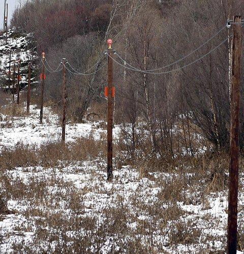 TJÆRE: Disse stolpene med innflygingslys skal fjernes. Massene rundt stolpene er forurenset. Derfor skal masser 0,5 meter rundt stolpene og ti centimeter under fjernes.Foto: Frode Danielsen
