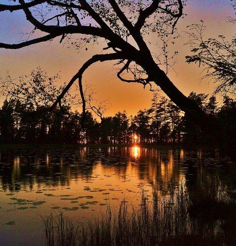 IDYLLISK: En solnedgang ved Vardetjern, knappe 100 meter vest for Høland varde er i fin naturopplevelse.
