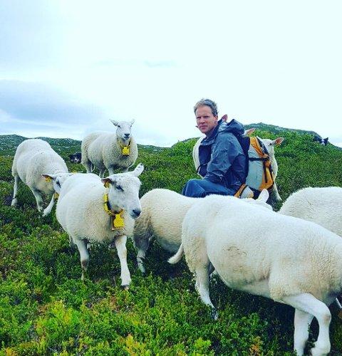 Even og sauene: Etter noen hektiske år med 160 vinterforede sauer, 350 lam, eget firma og full jobb i tillegg har hverdagen blitt roligere for Even og familien. Til daglig jobber Even som finansrådgiver i Innovasjon Norge.