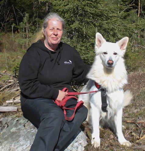 PÅ SPORET: Monica Hansen og hennes hund, Dio, skal forsøke å spore opp Sika, hunden som ble borte 3. august.