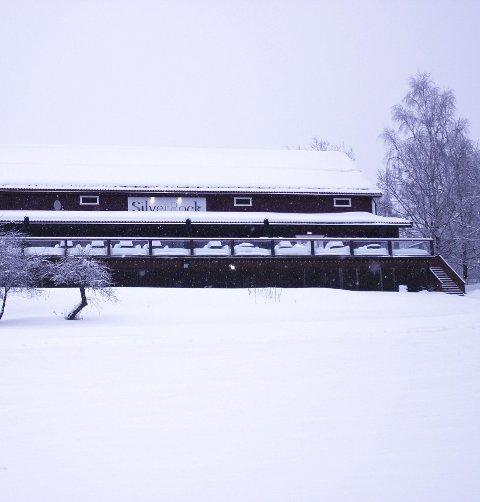 Bokettersyn: Kemneren i Ringsaker har varslet.