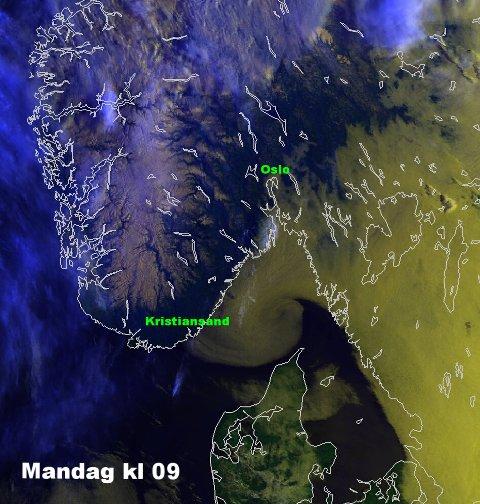 LÅ TETT: Tåka (gult) lå tett langs kysten tidlig mandag formiddag, men utover dagen skulle det ifølge Meteorologisk Institutt lette mange steder. (Foto: yr.no)