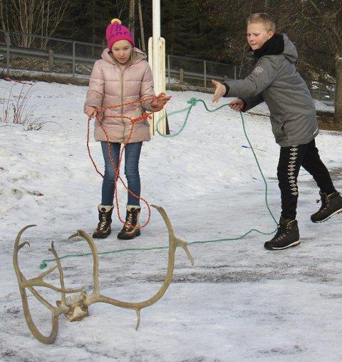 Lassokasting: Vegar Knutsmoen Borger kaster lasso mens Cecilie Ulvestad passer på at alt går bra.