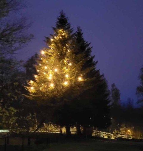 Her ble det jammen jul hele året.