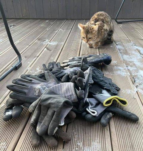 HANSKELAGER: Aysha med utvalget av hansker hun har samlet inn og lagret på familiens veranda i Hamna.
