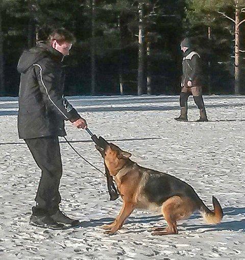 MÅ UT: Norsk Schæferhundklubb avdeling Halden, her ved leder Tom Atle Nohr, mister sitt faste tilholdssted i Torpedalen.