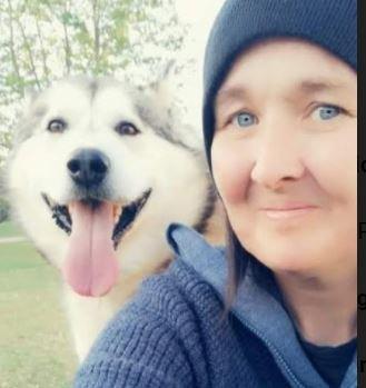 Villsvin på fortet:Ida Nelvik var på tur med hunden sin, en Alaskan Malamute,  da hun observerte det som kan være to villsvinunger inne i et kratt.
