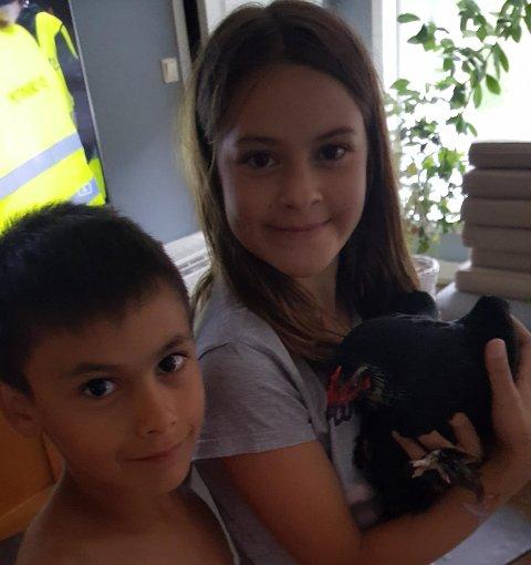 Teodor og Matilde er glad i dyr, men trur nok at nokon saknar høna si.