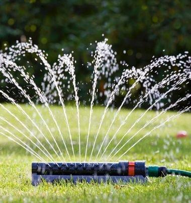 TØRT: Det er nå ikke tillatt å bruke vannspreder i hagen, og hagevanning er ellers kun tillatt mellom klokka 19 og 21.