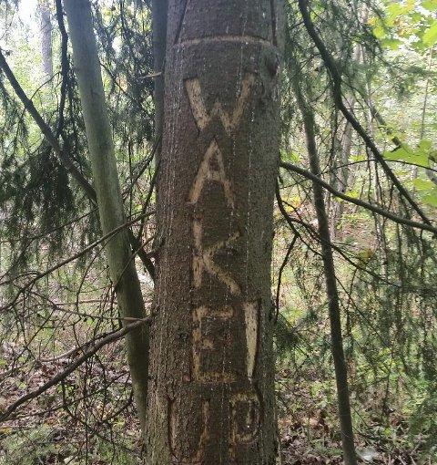 WAKE UP: Noen har tydeligvis et budskap de vil få ut til turgåerne. Foto: Privat