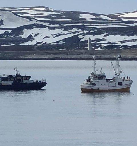 "SJEKKER: Her følger Fiskeridirektoratet med når ""Roholmen"" fanger kval."