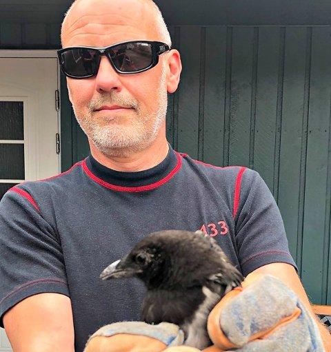FRI FUGL: Med litt hjelp fra brannkonstabel Jim Nilsen, kom skjæra seg ut i det fri igjen.