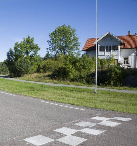 Haugentomta: I dette området ved Fjellstrand skole er den nye barnehagen planlagt. foto: Henriette slaatsveen