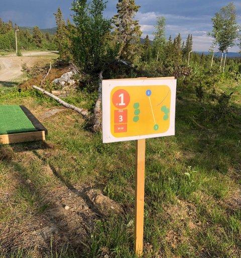Suksess: Den nye frisbeegolfbanen på Beitostølen er ganske ny, men det har allerede vært stor pågang på banen.