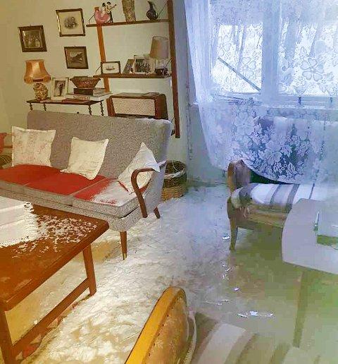 KNUST VINDU: Fullt av snø og glasskår i stua etter at brøytebilen kjørte forbi huset i Sørdalen i Bardu.