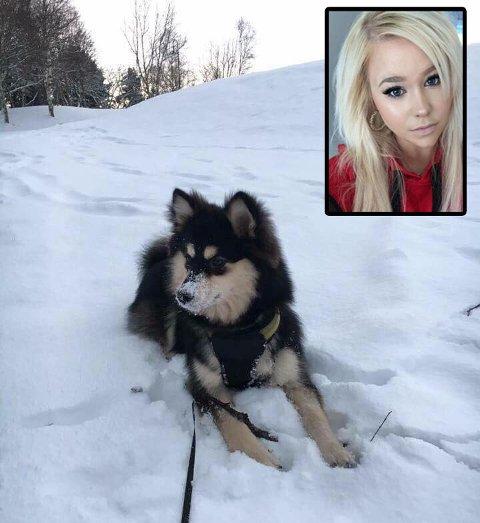 May-Helèn Berg og hennes Finske Lapphund.