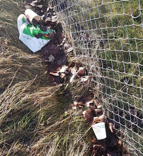 Kastet fra seg: Denne søpla Oddrun Vågbø i Leiraveien i Lillestrøm.