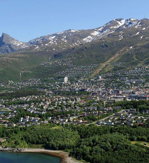 Attraktivt: Tomtene som Narvikfjellet Eiendom har lagt ut i Fagernesfjellet, går unna i et langt større tempo enn man hadde turt å håpe. Til sammen skal det selges med enn 600 hyttetomter og 150 boligtomter. Per nå er halvparten av boligtomtene lagt ut for salg.Illustrasjon: Narvikfjellet Eiendom