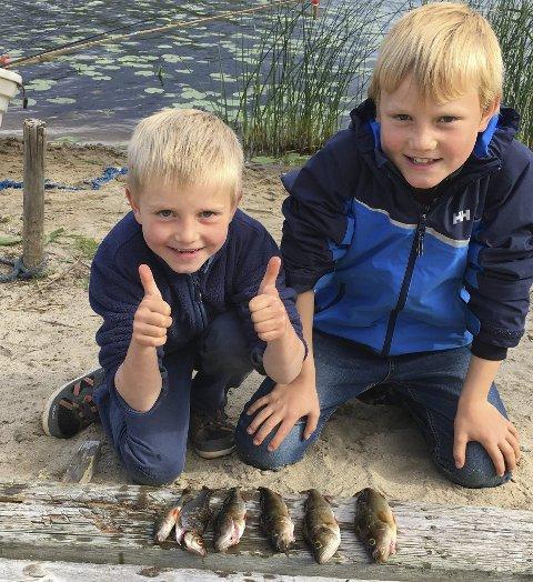 Fiskeglede: Jonas og Amund Kortner Vogt fikk disse abborene (og en mort) ved morfars sommerhus på Vestmarka i Eidskog.