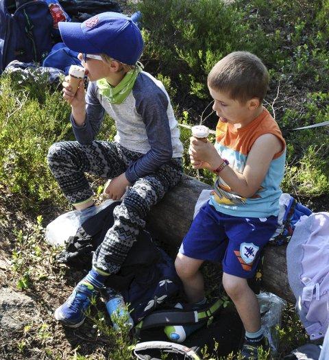 Gutta på tur: I skoleskogen i Garder.