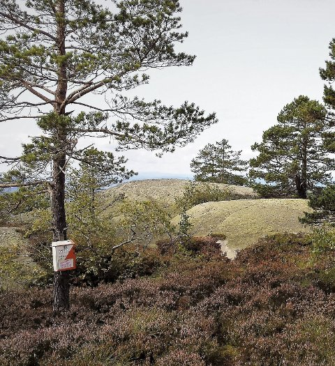 September: Denne måneden finner du posten på Prestslettås.