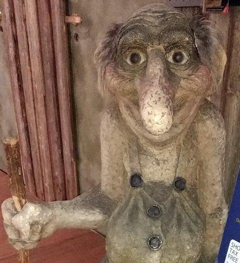 SÅ SYNER: Telemarkingen hadde ruset seg og trodde han så et troll i en nattestengt Kiwi-butikk.