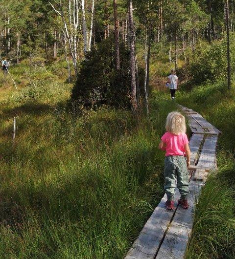 UT PÅ TUR: I vakre omgivelser og i strålende solskinn gikk søndagens DNT-tur av stabelen i Skrabberud.