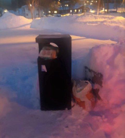 IKKE HUSHOLDNINGSAVFALL: Søppeldunkene som kommunen har satt opp i Fagernes sentrum er ikke beregna til husholdningsavfall, opplyser Runar Kittelsen hos Nord-Aurdal kommune.