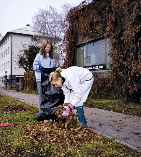 ILLUSTRASJONSBILDE: Operasjon Dagsverk.