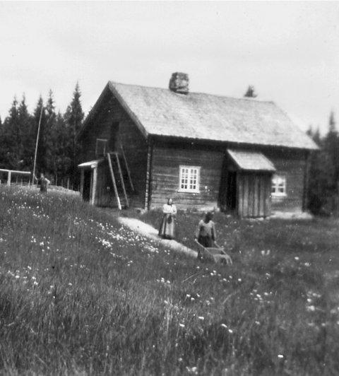 Tjernslihytta, eller Nordre Skogen som plassen i sin tid het. Bildet er fra begynnelsen av 20-tallet.