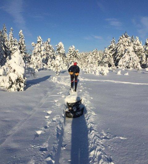 TURSTI: Gøran Tømte tar med seg bildekk ut i skogen for å lage turstier som folk kan benytte seg av.