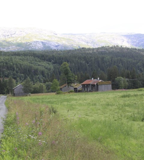 Hvor er dette? a)Bardal, Leirfjord. b) Øksendal, Vefsn (riktig). c)Høgåsveien, Sandnessjøen