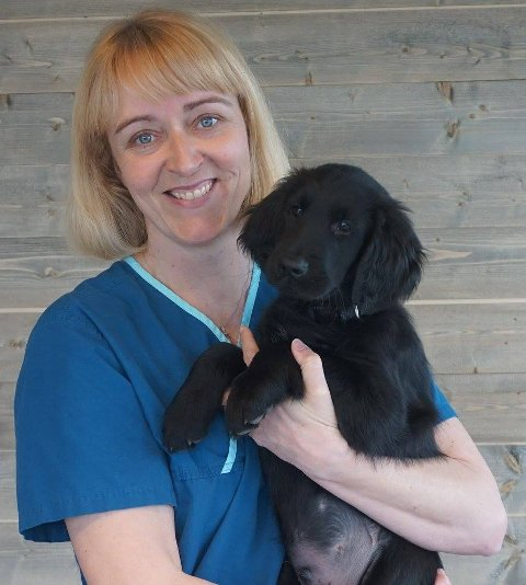 Tenk på hunden: Veterinær og daglig leder ved Dyrlegene i Bodø, Liv Hege Jenssen, håper folk tar hensyn til hunden på slike festdager.