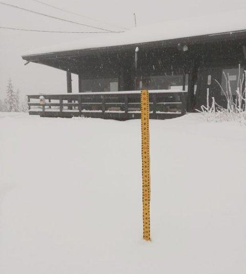 30 CENTIMETER: Dette bildet ble tatt på toppen av Varingskollen fredag. Da var det 30 centimeter med snø på stedet.