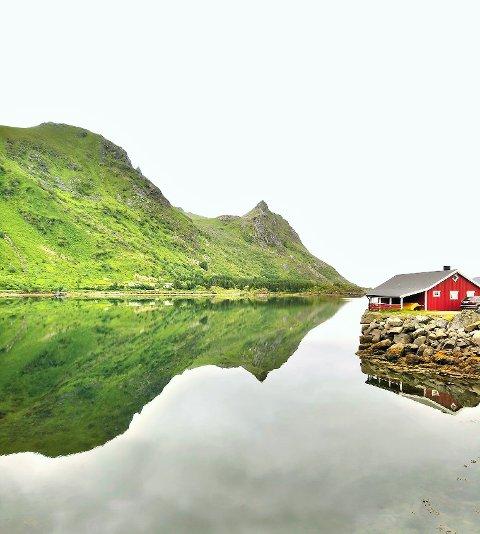 Lofoten byr utvilsomt på mye vakker natur. Som her innerst i Rolvsfjorden. Bør vi ikke verne om landskapet i regionen?