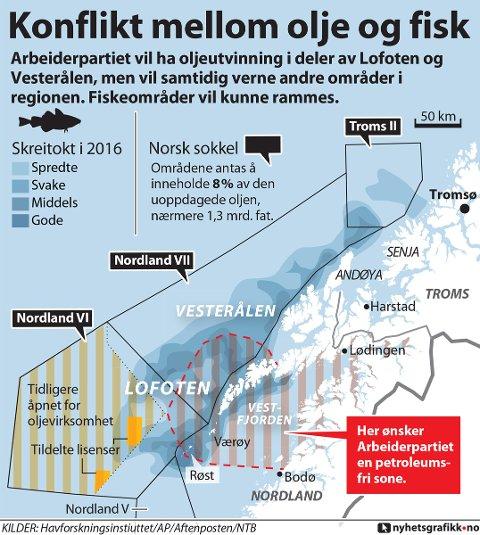 Et klart flertall i Nordland AP gikk inn for dette forslaget for LoVeSe.